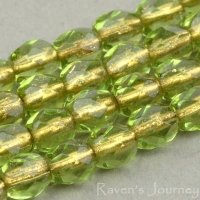 Round Faceted (4mm) Olivine Green Transparent with Bronze Lining