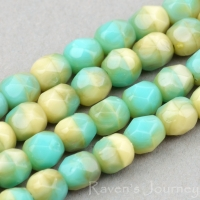 Round Faceted (4mm) Turquoise Ivory Mix Opaque