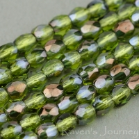 Round Faceted (3mm) Green Olivine Transparent with Bronze