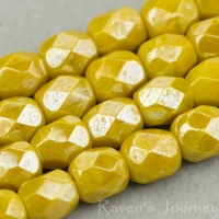 Round Faceted (4mm) Mustard Orange Opaque with White Luster
