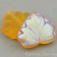 Maple Leaf (13x11mm) Amber Transparent Matte with AB