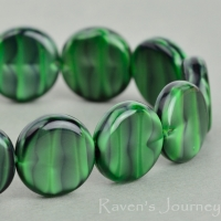 Coin (12mm) Green Tiger's Eye