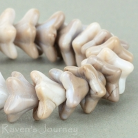 5 Point Bellflower (6x9mm) Taupe White Mix Opaque