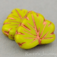 Maple Leaf (13x11mm) Gaspeite Opaque with Copper Wash