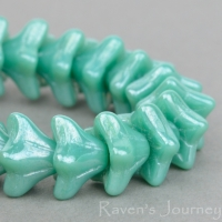 5 Point Bellflower (6x9mm) Turquoise Opaque with White Luster