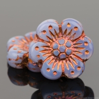 Wild Rose (14mm) Purple Opaline with Copper Wash