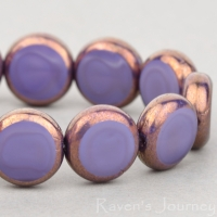 Lentil Coin (11mm) Purple Silk with Bronze