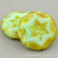 Scalloped Coin with Star (16mm) Mint Green Silk with Picasso