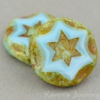 Scalloped Coin with Star (16mm) Sky Blue Silk with Picasso